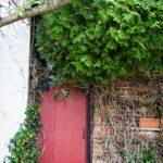 Frederick_Maryland_Doors-_0193