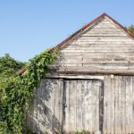 Frederick_Maryland_Doors-_0296